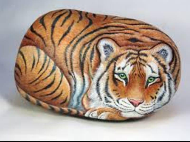 Tigre en piedras