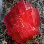 rodonita piedra